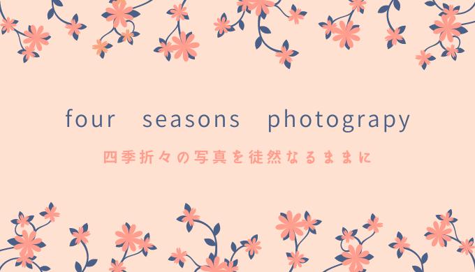 four seasons photograpy 四季折々の写真を徒然なるままに